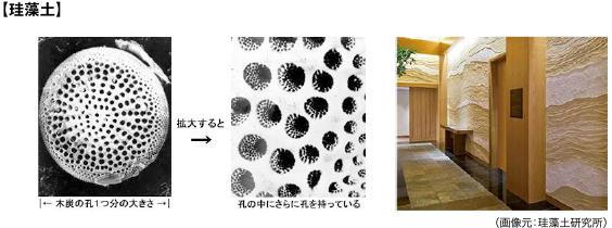 珪藻土(画像元:珪藻土研究所)
